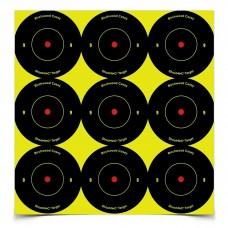 Birchwood Casey Shoot-N-C Target, Round Bullseye, 2